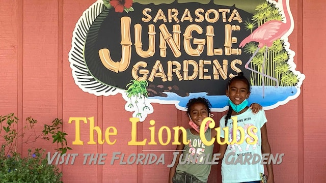 What animals live in Florida? Find out at the Sarasota Jungle Gardens