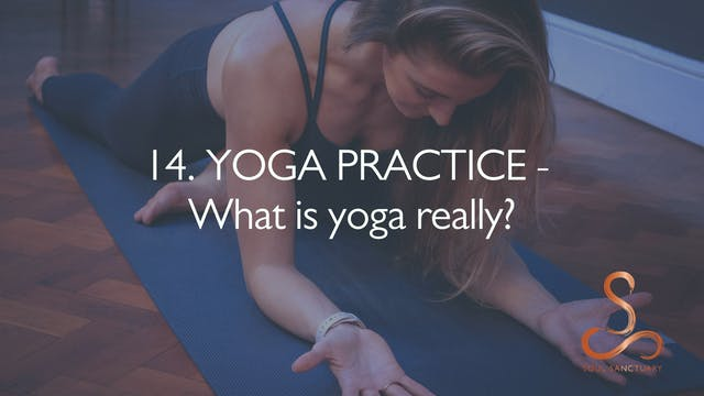 14. YOGA PRACTICE - What is Yoga Really?