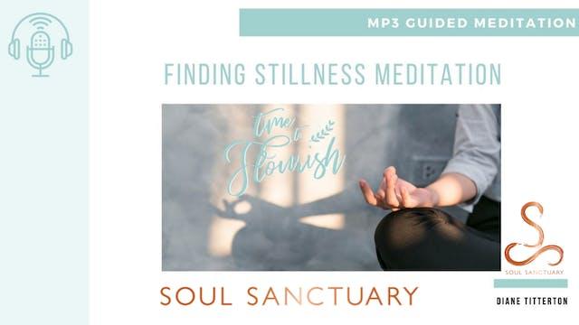 Lesson 1b - Meditation: Finding Stillness