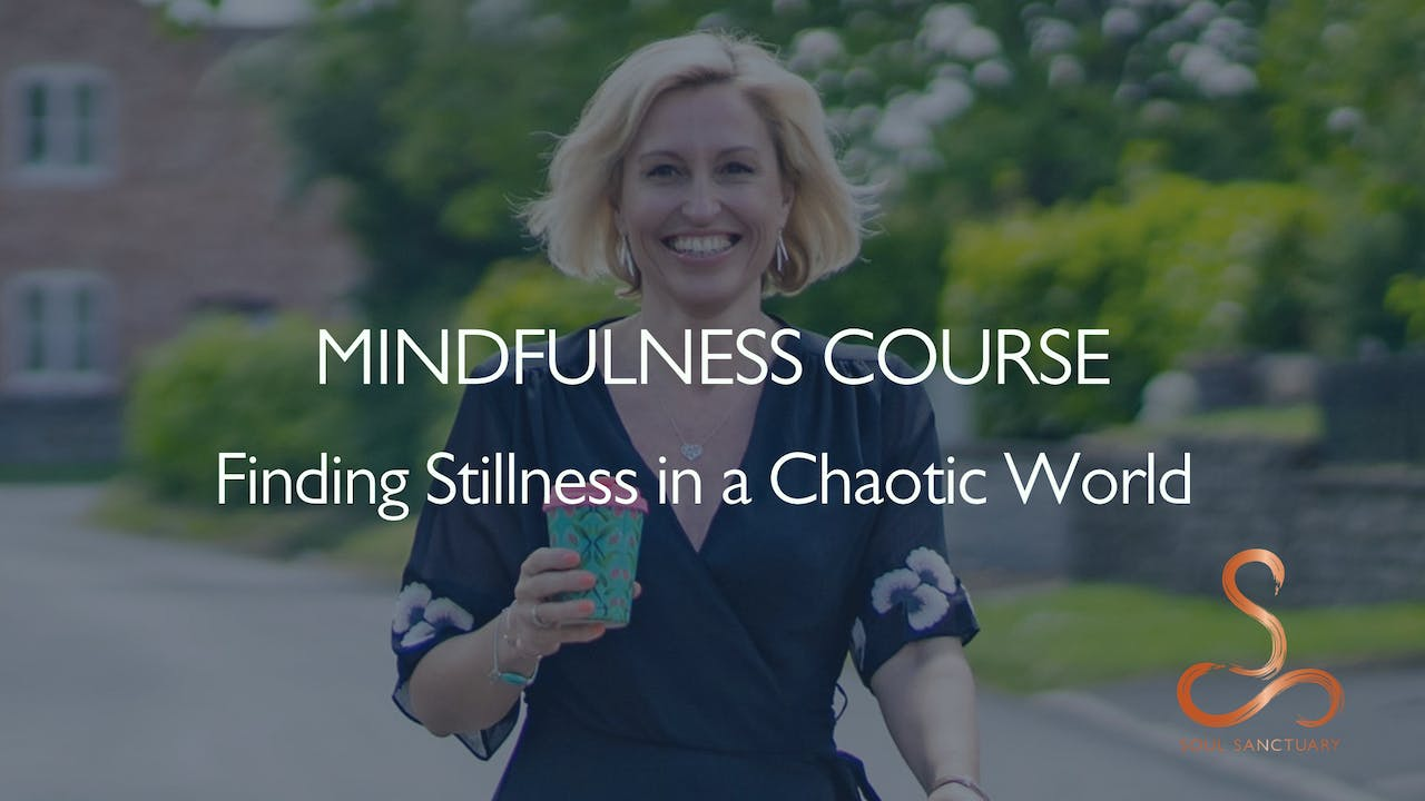 Finding Stillness in a Chaotic World