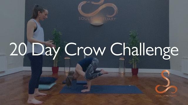 20 Day Crow Challenge #SSCROWCHALLENGE