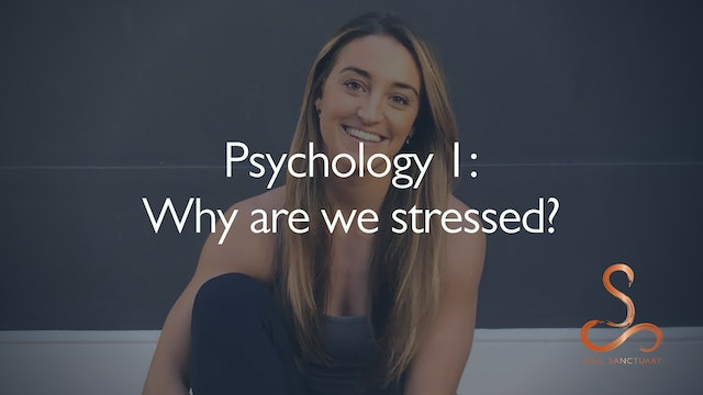Why are we stressed?