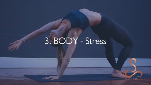 3. BODY - Stress