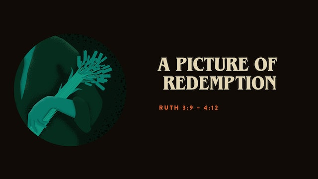 A Picture of Redemption // The Book