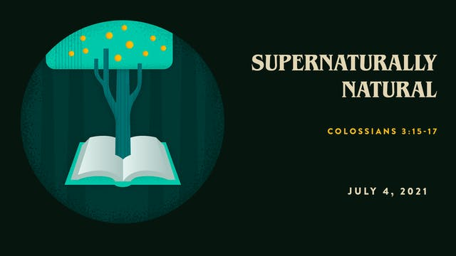 Supernaturally Natural // The Book : ...