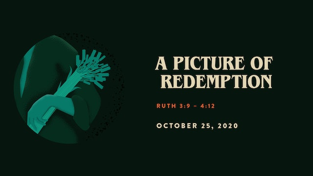A Picture of Redemption // The Book - Judges | Ruth
