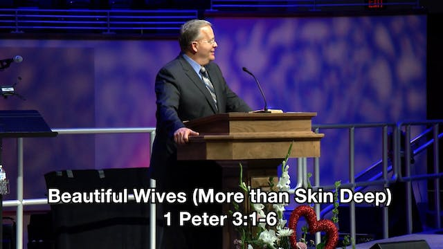 Beautiful Wives (More than Skin Deep)