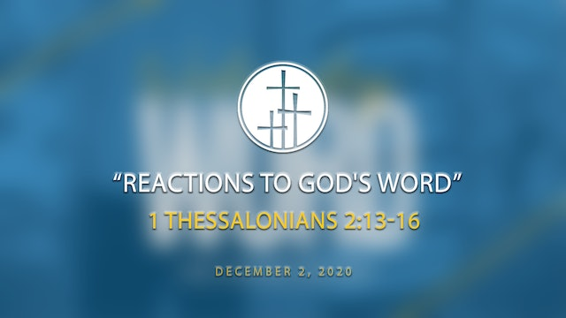 Reactions to God's Word // WW