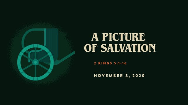 A Picture of Salvation // The Book - ...
