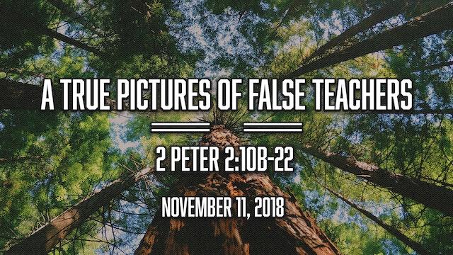 A True Picture of False Teachers