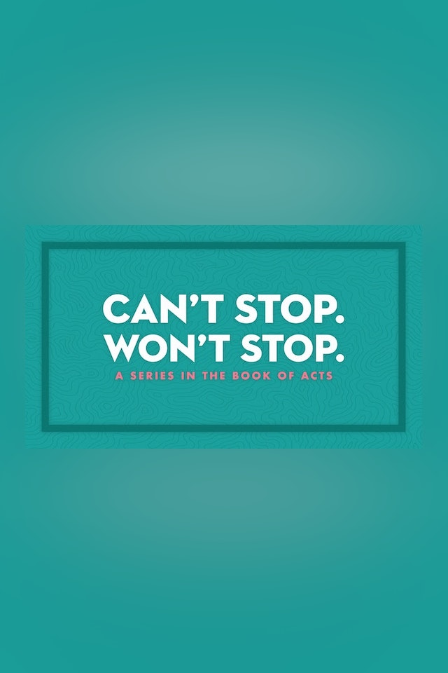 Can't Stop Won't Stop - Brandon Hays
