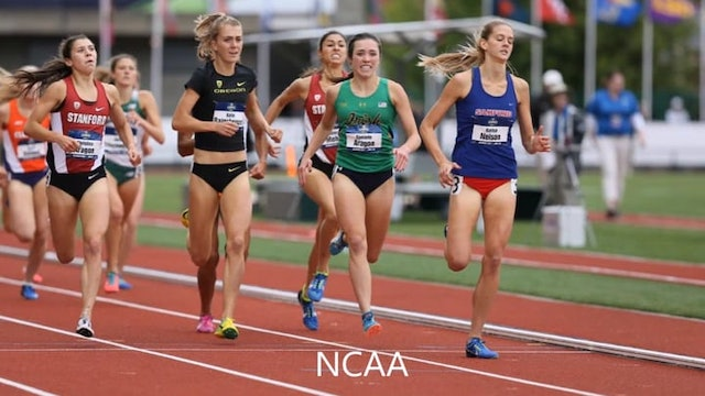 Track and Field student-athlete Josien Scheepens (the Netherlands) - Available August 2018