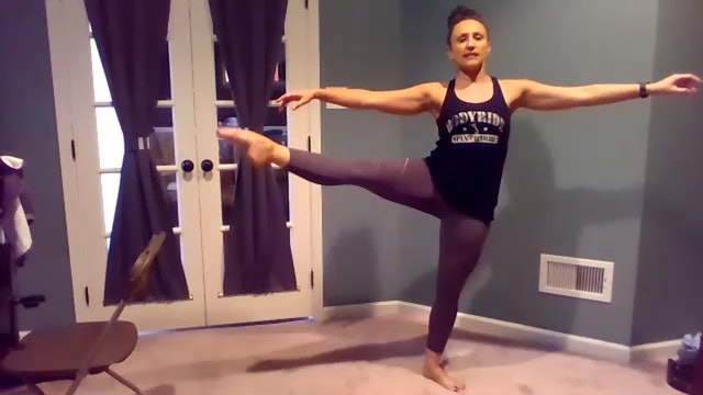 LIVE ZOOM BARRE w Kelly August 3, 2020