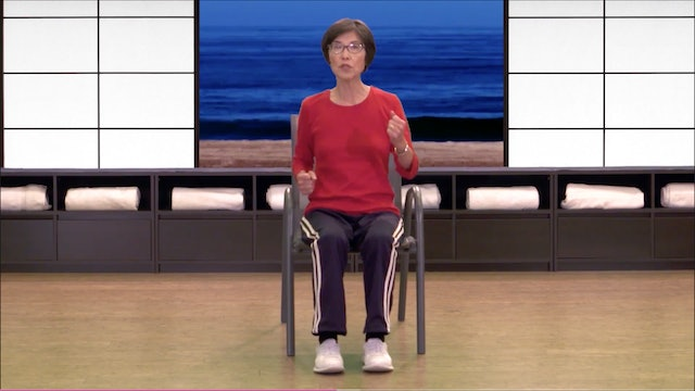 Seated FUNctional Fitness