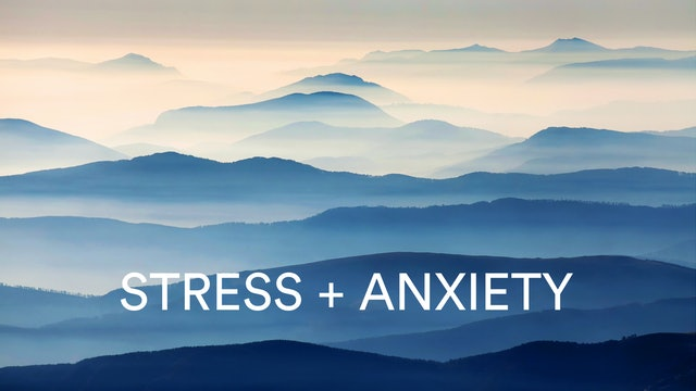 Stress + Anxiety Meditation with Abir