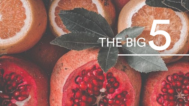 The Big 5 Nutrition Series With Abir