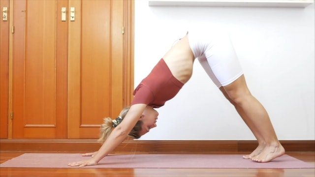 16 min yoga vinyasa movimiento orgánico
