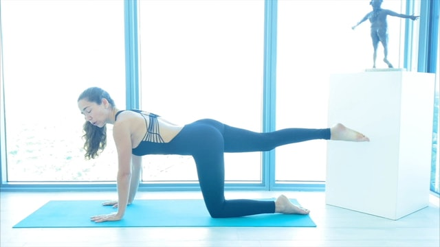17 min pilates movimientos de columna-caderas y hombros