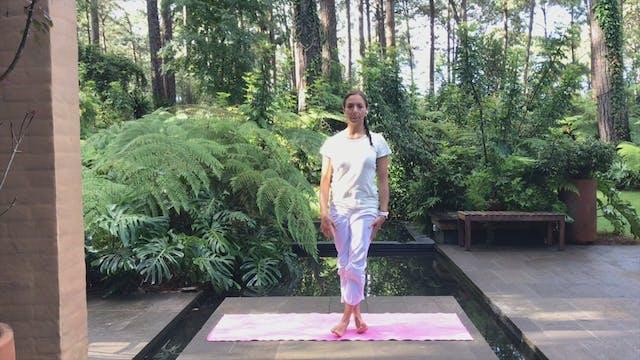 30 min hatha yoga alínea tu cuerpo, m...