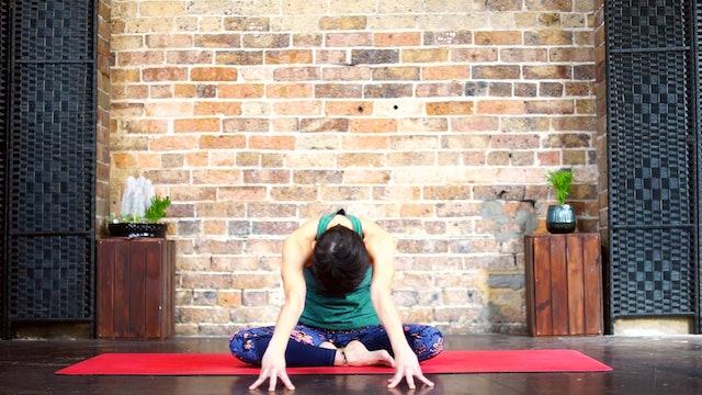 Yoga Sutra Surya Namaskar