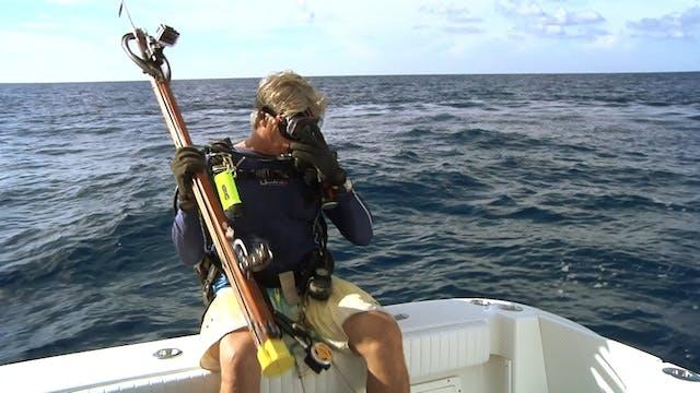 Ocean Explorer_Crystal River Scalloping