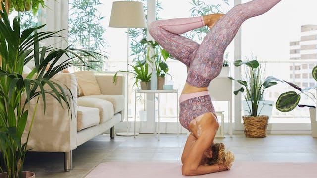 Iniciación al yoga | Conecta mente y ...