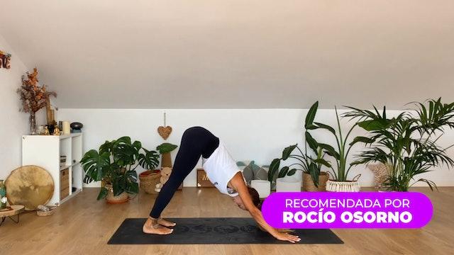 Yoga Flow & Flex | 60 min | Con Laura Lakshmi