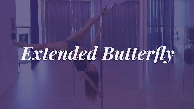 Extended Butterfly