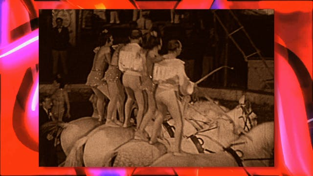 Circus Fun 013R