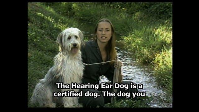 Hear Dog 06