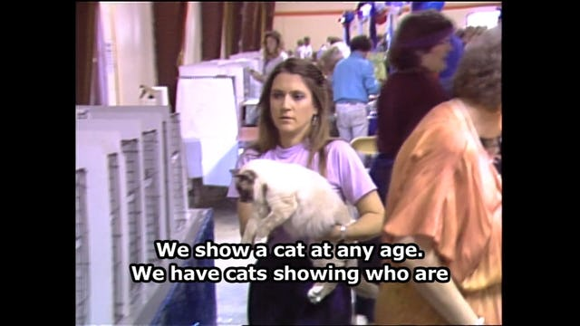 Hear, Kitty Kitty 10  (History of cats)