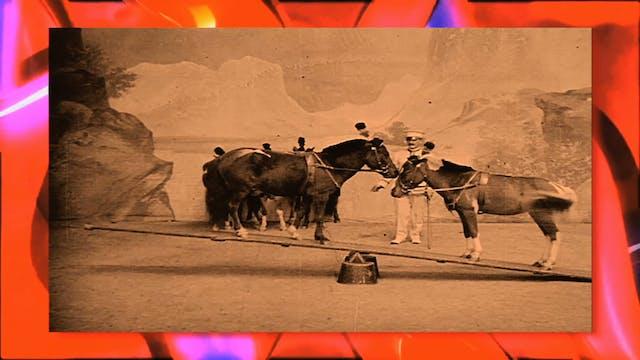 Circus Fun 021R