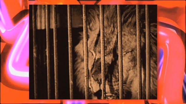 Circus Fun 026R