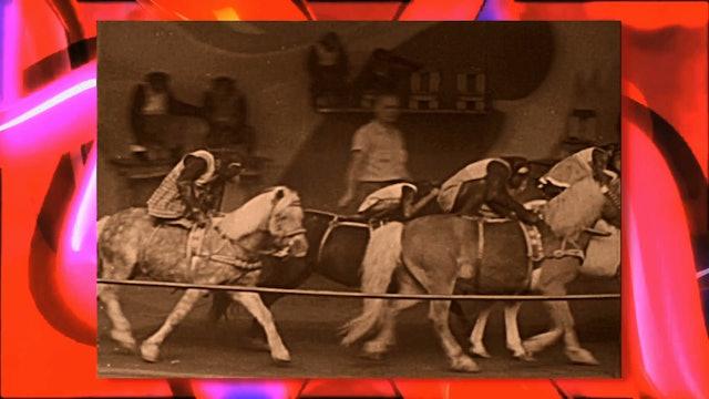Circus Fun 016R
