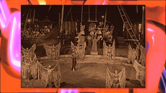 Circus Fun 010R