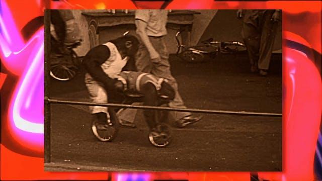 Circus Fun 017R