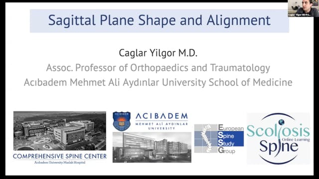 Global Balance-Sagittal Alignment Dr Caglar Yilgor