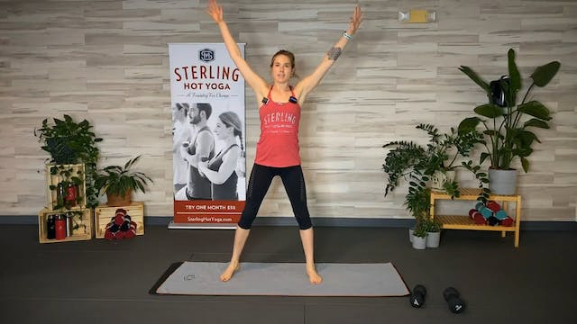 30min Upper Body and Core with Caro #2