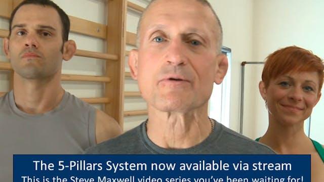 Steve Maxwell's Five Pillars