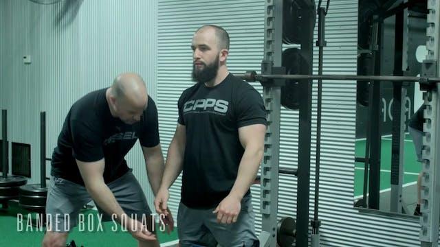 Ageless Athlete - Lower Body