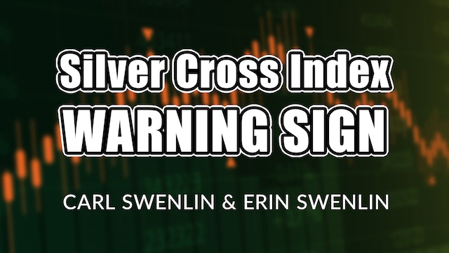 Silver Cross Index WARNING SIGN! | Carl Swenlin & Erin Swenlin (03.15)