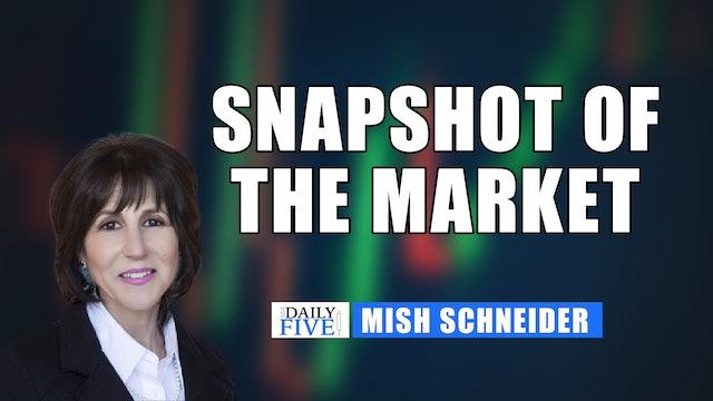 Snapshot of the Market | Mish Schneider (07.20)