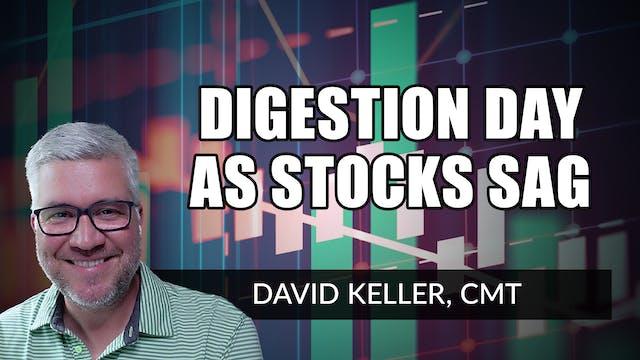 Digestion Day as Stocks Sag | David K...