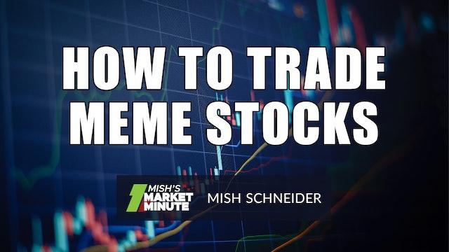 How to Trade MEME Stocks | Mish Schneider (06.11)