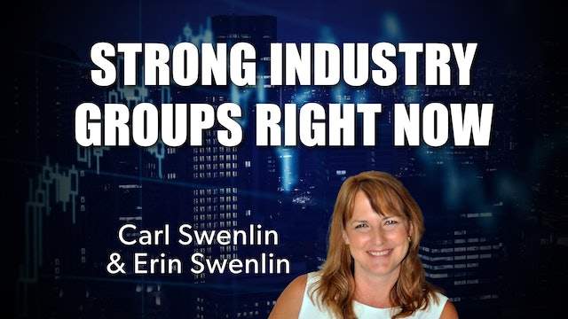 Strong Industry Groups Right Now | Carl Swenlin & Erin Swenlin (08.16)