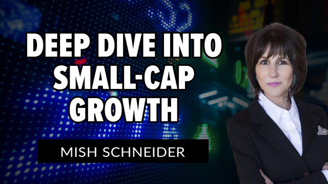 Deep Dive Into Small-Cap Growth | Mish Schneider (05.28)