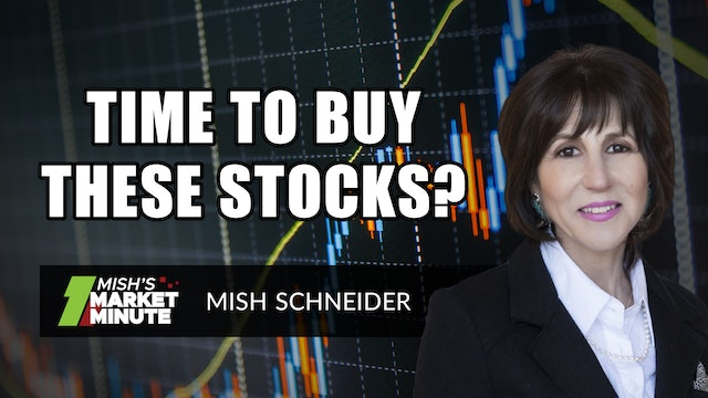 Time To Buy These Stocks? | Mish Schneider  (02.26)