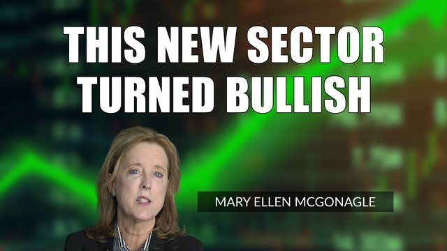 This New Sector Turned Bullish   Mary Ellen McGonagle (08.06)