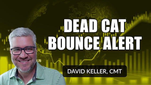 Dead Cat Bounce Alert | David Keller,...