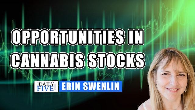Opportunities In Cannabis Stocks | Erin Swenlin (06.07)